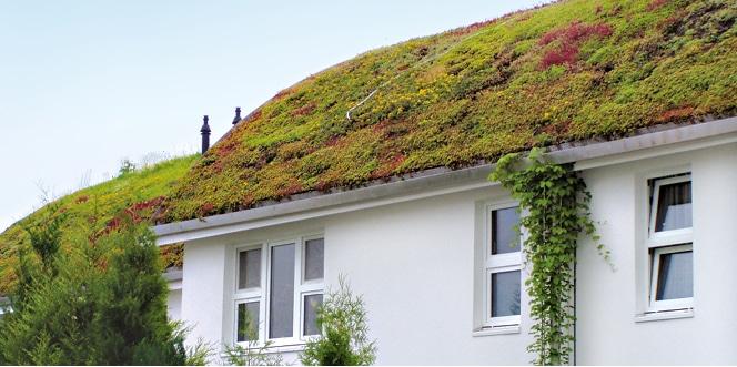 Tonnendach-Pinneberg_1